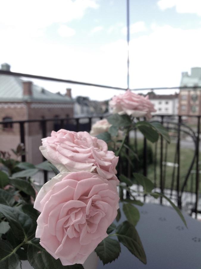 Utmattning utmattad utmattningssyndrom psykiskohälsa Ströget Köpenhamn utbränd väggen beteendeförändring livsstil livsstilsförändring