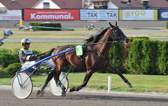 foto:Hovtramp/Lasse - Magnificent Match