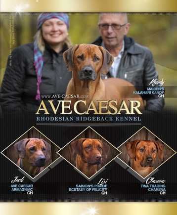 we and our 4 ridgebacks