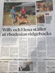 artikle i tidningen