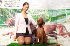 Wella Open Show with handler Zaderenko