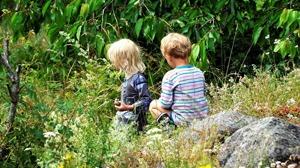 """""""Man kan inte påstå att barnrättsperspektivet stärks genom att göra det lättare för socialtjänsten att rycka upp barnen från sin trygga miljö"""", skriver AnnSophie Forsell Öhrn, Lena Fenryr, Jeanette Ro"""