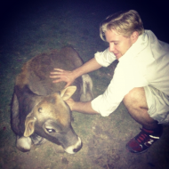 Samuel with one of the cows in Kathmandu, Nepal.