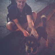 Samuel with one of the fantastic dog in Pokhara, Nepal.