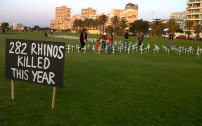 282 rhinos have already been killed this year in South Africa! White crosses were put up for each one of them to make people aware of this awful fact. But the police soon took them away… They can try to keep us unaware but you who care -you know what a problem this is and that we should do everything to make as many as possible rise up and help put an end to hunting of rhinos, elephants etc. Poaching must stop now! Let's join together to protect these beautiful wild animals!
