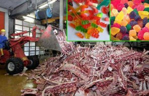 This is gelatine, E441