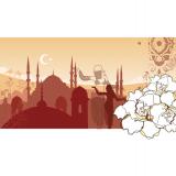 Till pitch för wella som skulle resa till Istanbul