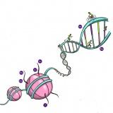 Avhandling - DNA