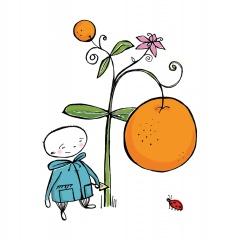 Trädgårdsmästaren - Apelsinen