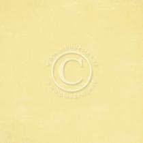 Enfärgat papper från Pion design 12x12
