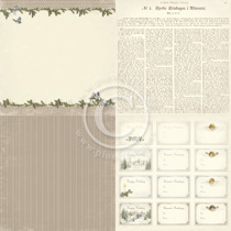 Winter birds - Glistening Season - 6x6