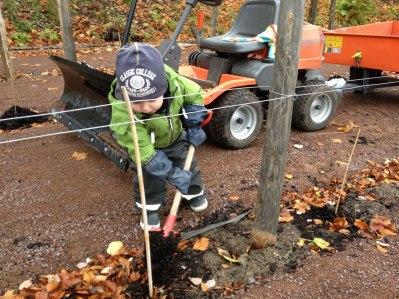 Vingårdsarbetaren Ludde vintertäcker stockarna.