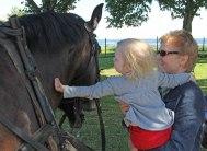 Astrid o mormor klappar hästen.