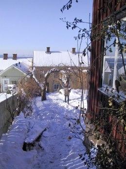 Vinterbild från 2001