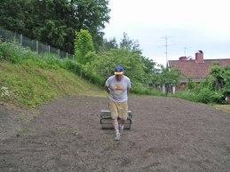 Vältning av gräsmattan (juli 2005).