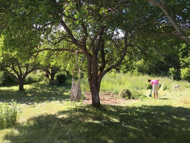 Och så fick jag hjälp av Alexandra och Ellen med gräsklippning och att trimma! <3