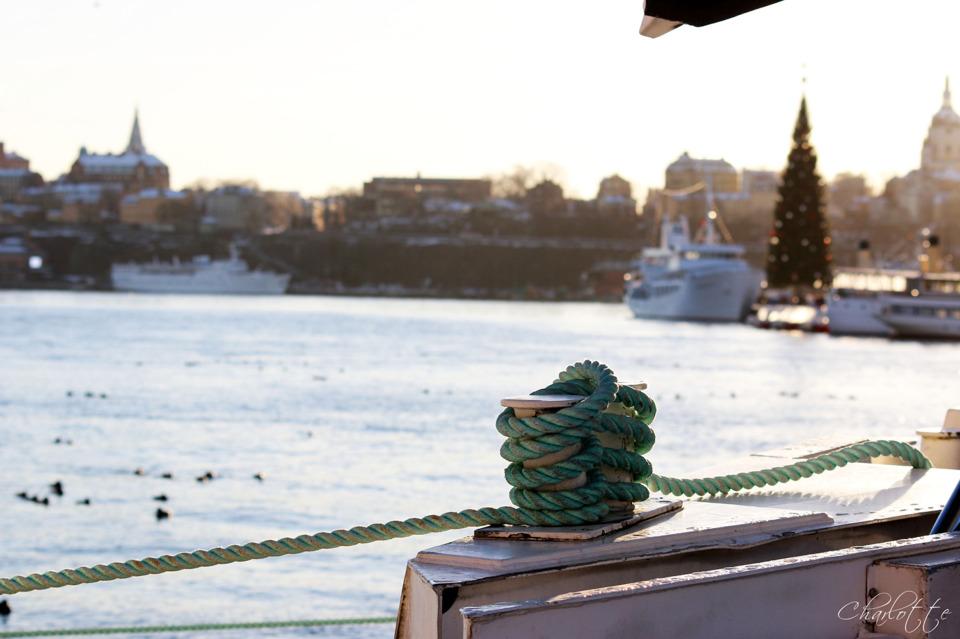 Kontrasten är stor mellan skärgårdsbåtarna i förgrunden och julgranen i bakgrunden