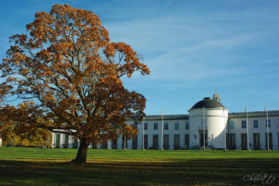 Gärdet, Sjöhistoriska museet