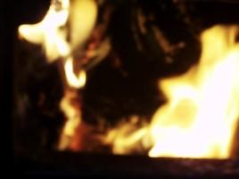 Andra året satte man eld på den torkade bråten, med barkade och fällda trän.