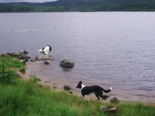 Molly och Millan badar i sjön Hån, som idag är reglerad och som kan ha givit byn sitt namn