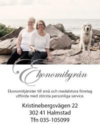 Välkommen som kund hos Ekonomibyrån Elisabeth Svensson auktoriserad redovisningskonsult  i Halmstad!