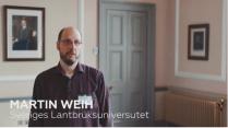 Martin Weih, SLU