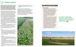Från broschyren Framtidens jordbruk