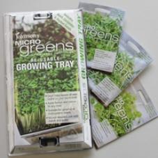 Odlingsbricka för minigrönt