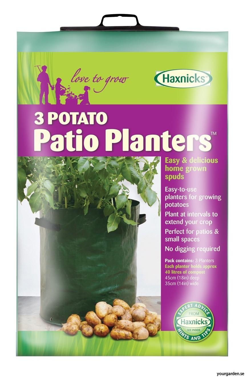 planter010101_2