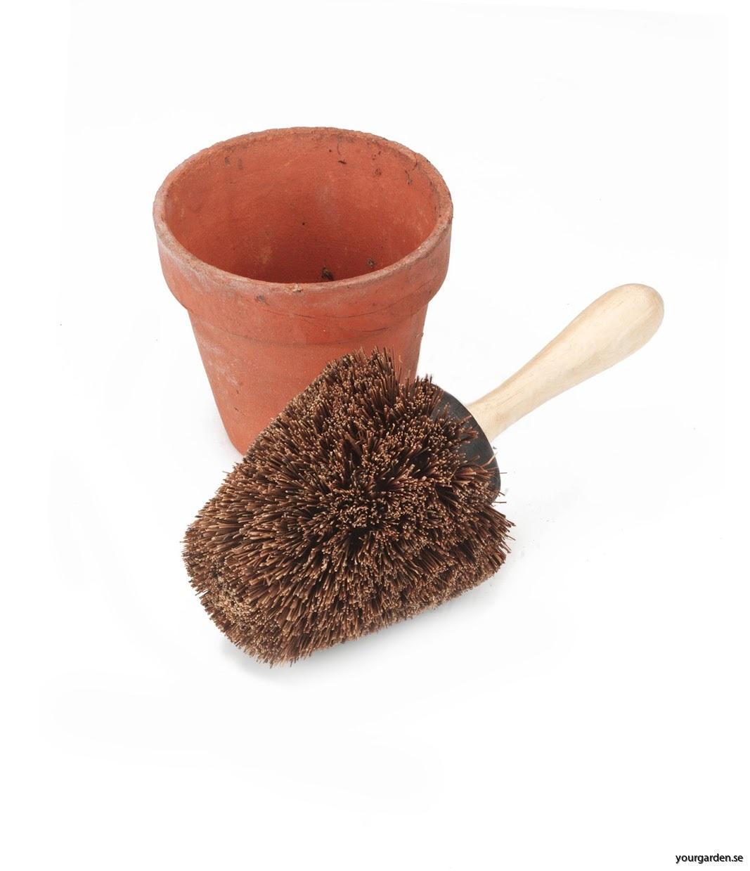 Pot brush with Pot Hi res