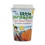 Little Gardener såkit - Pumpa