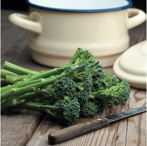 Broccoli Green Sprouting (ORGANIC)