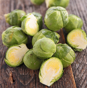 Brussels Sprout Groninger (ORGANIC)