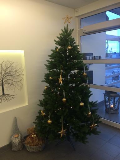 God jul & gott nytt år önskar Läjeskliniken!