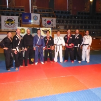 master Nordic hapkido Cup