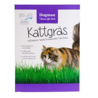 Dogman Kattgräs - Kattgräs