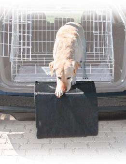 Bilskydd för lastutrymme - Bilskydd