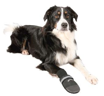 Hundskor Walker professional 2-pack - 2-pack  XS