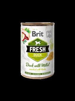 Brit Fresh Anka -
