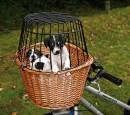 Cykelkorg i brun pil