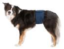 Hanhundsskydd