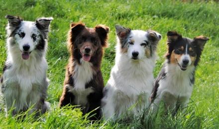 Nikki med döttrarna Milla, Maja och Taiga