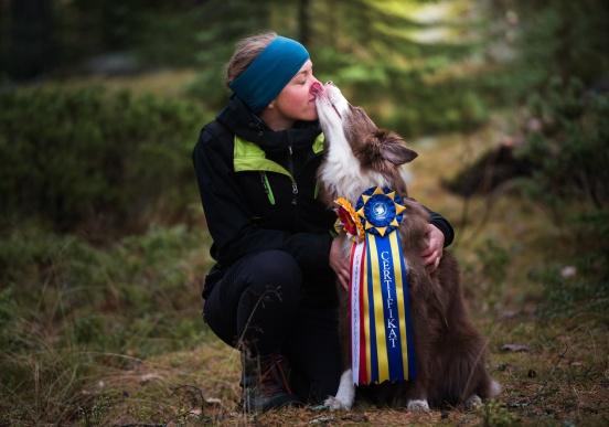 "Nikkitopetes andra Champion RLDN RLDF RLDA RallyCh Nikkitorpets  Miss Brown ""Rue"""