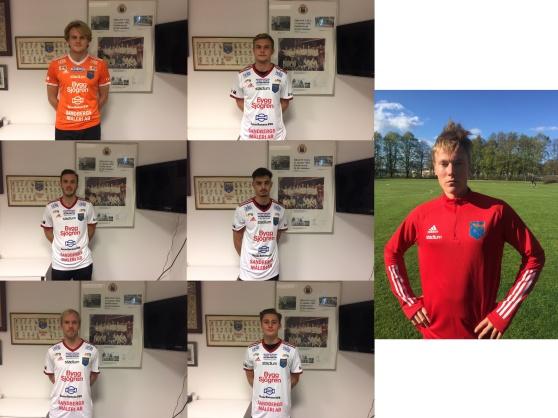 Markus Rydeberg, Adrian Hallsö, Erik Pålsson, Kenan Covrk, Kristoffer Thydell, Oliver Hansson och längst till höger Oliver Brynéus. Samtliga klara för IS Halmia Herr 2021. Foto: IS Halmia
