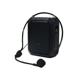 Strongvoice 18 VD Wireless