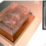 glaskonst amaryllis