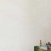 Wall Paint Old White provburk