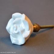 Knopp White Rose