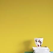 Wall Paint English Yellow provburk
