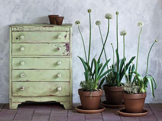 Lem Lem, Annie Sloan Chalk Paint™. Kulör i limited edition i samarbete med Oxfam
